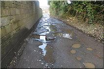 J3582 : Potholed lane, Whiteabbey by Robert Ashby