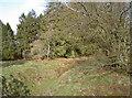 ST5655 : Gruffy ground by Neil Owen