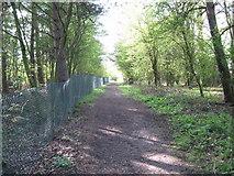 SK1827 : Fauld crater fencing-Hanbury, Staffs by Martin Richard Phelan