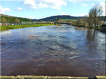 SO5012 : The Monnow in spate, from the old bridge, Monmouth by Ruth Sharville