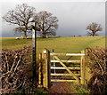 SO4107 : Gate to Raglan Healthy Footsteps path, Raglan by Jaggery