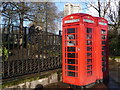 TQ2879 : London: two phone boxes abutting Hyde Park by Chris Downer