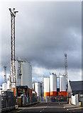 NJ9505 : Aberdeen docks by William Starkey