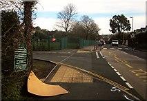 SX9065 : Poster, Cricketfield Road, Torquay by Derek Harper