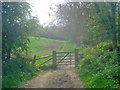 SP1643 : Bridleway at Bath Coppice by Trevor Rickard