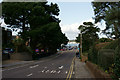 SZ0487 : Banks Road, Sandbanks by Peter Trimming