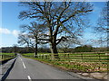 SO3915 : The B4233 from the entrance to Park Farm, Llantilio Crossenny by Ruth Sharville