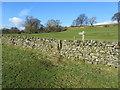 SE1072 : Fingerpost on the Nidderdale Way by Chris Heaton