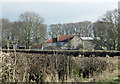 SE8184 : Brutal hedge cutting by Pauline E