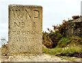 J4583 : Former War Department (WD) marker stone, Grey Point, Helen's Bay by Albert Bridge