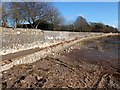 SX9687 : Storm damage to the Goat Walk at Topsham (2) by David Smith