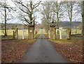 NH6167 : Driveway to Novar House by Craig Wallace