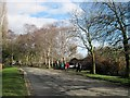 SJ8189 : Wythenshawe Park, Manchester by Tricia Neal