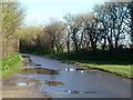 SZ8694 : Rectory Lane by Robin Webster
