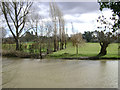 SP2965 : Floodmeadow, River Avon by Emscote Gardens, Warwick 2014, February 15, 12:25 by Robin Stott