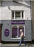 ST0743 : Blondies and Baldies by Neil Owen