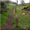 SO3321 : Concrete posts alongside Offa's Dyke Path in Pandy by Jaggery