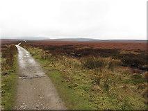 SK0893 : Pennine Way near Snake Pass by Gareth James