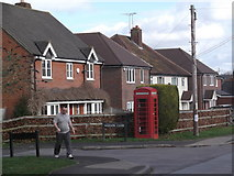 SU5985 : Telephone Box, Papist Way, Cholsey by Robin Sones