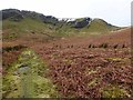 NY3428 : Southern end of Bannerdale Crags by Oliver Dixon