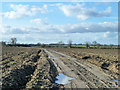 SP6826 : Track across ploughed field by Robin Webster