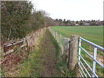 NZ0559 : Footpath between New Ridley and Painshawfield by Clive Nicholson