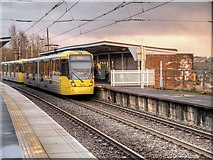 SD7807 : Tram at Radcliffe by David Dixon