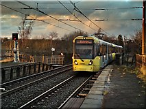 SD7807 : Tram Approaching Radcliffe by David Dixon