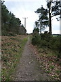 SJ9714 : Up the bridleway towards Pye Green by Richard Law