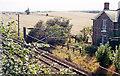 SE3498 : Site of Danby Wiske station, ECML 1991 by Ben Brooksbank