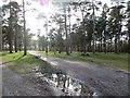 SK0016 : Tackeroo Caravan Site by Richard Webb
