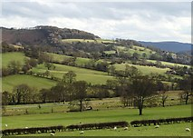 SK2381 : Hood Brook Valley by Neil Theasby
