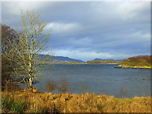 NR8262 : West Loch Tarbert from the causeway at Kennacraig by sylvia duckworth