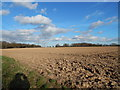 TL9939 : Pylons and farmland in between Polstead and Polstead Heath by Hamish Griffin