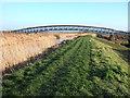 TL5567 : Reach Lode and bridge on Tubney Fen by Richard Humphrey