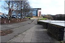 NS3421 : Riverside Footpath, Ayr by Billy McCrorie