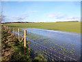 SU4476 : The Winterbourne in a Field by Des Blenkinsopp