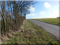 TL9443 : Road to Rose Green by Hamish Griffin