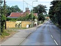 TM2750 : Woodbridge, Woods Lane by David Dixon