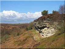 SE8791 : High Bride Stones by Gordon Hatton
