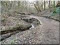 SJ9594 : Gower Hey Brook Culvert by Gerald England
