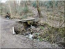 SJ9594 : Footbridge over Gower Hey Brook by Gerald England
