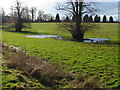TQ0350 : Waterlogged grassland by Alan Hunt