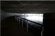 TQ3783 : The River Lea under the A118 by Ian S