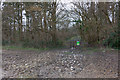 SU4719 : Footpath entering Stoke Park Wood by Peter Facey