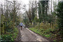 TQ3386 : Capital Ring in Abney Park Cemetery by Ian S