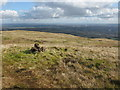 NS4875 : Cochno Hill Summit Cairn by G Laird