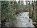 SS9085 : The Afon Garw/River Garw at Bryngarw Country Park by eswales