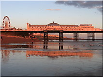 TQ3103 : Palace Pier by Simon Carey