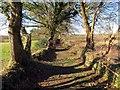 SN6500 : Hen heol Maes Eglwys  / Maes Eglwys old road by Alan Richards